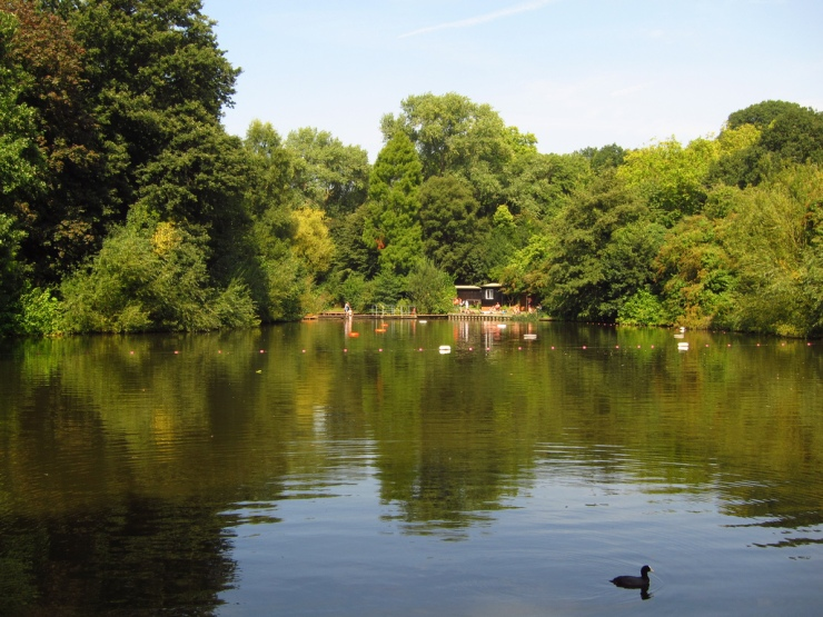 The mixed bathing pond in Hampstead Heath