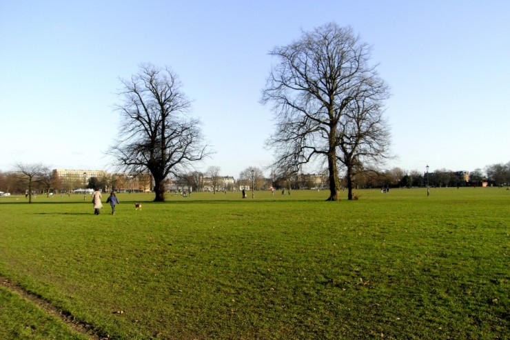 Clapham Common on a sunny day - may be rainier when you visit